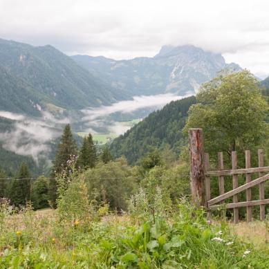 Blick ins Johnsbachtal