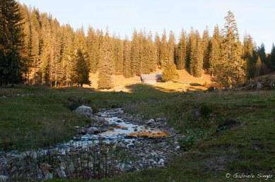 Nationalpark Gesäuse, Steiermark